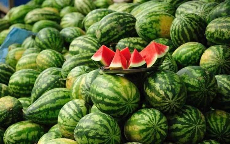 盒马抽奖送3万斤西瓜上热搜,关于社会化营销的一些思考