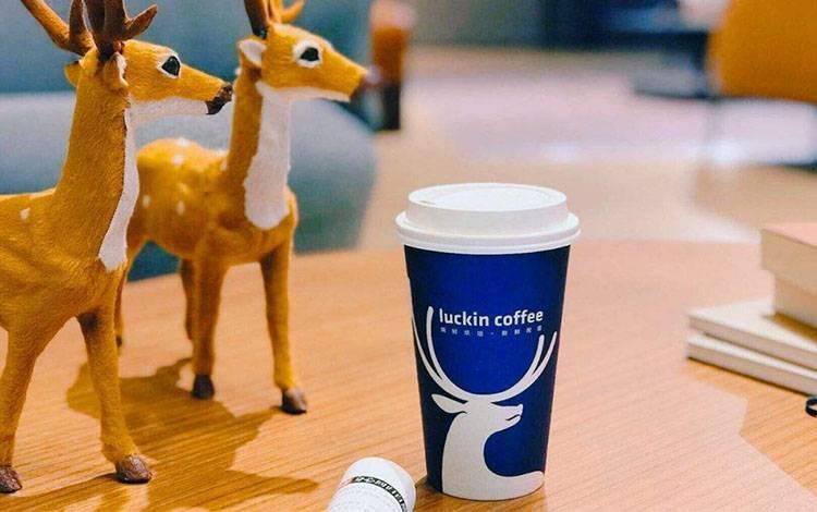 """5个月,从0到300家店,""""小蓝杯""""咖啡如何刷屏朋友圈?"""