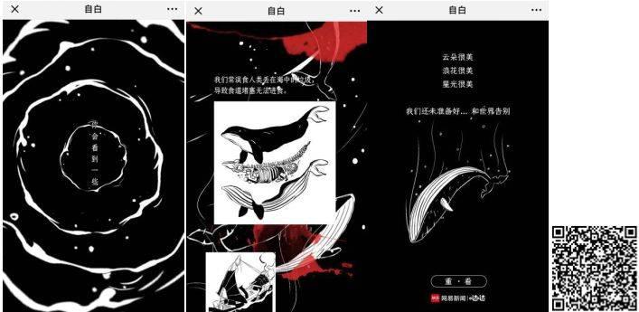 鸟哥笔记,新媒体运营,琛姐,内容运营,新媒体营销,H5