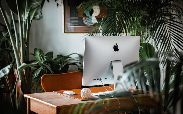 鸟哥笔记,职场成长,猫力,工作,规划,成长