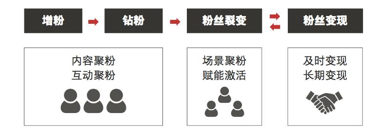 鸟哥笔记,广告营销,JS策划人,案例分析,策略,盘点