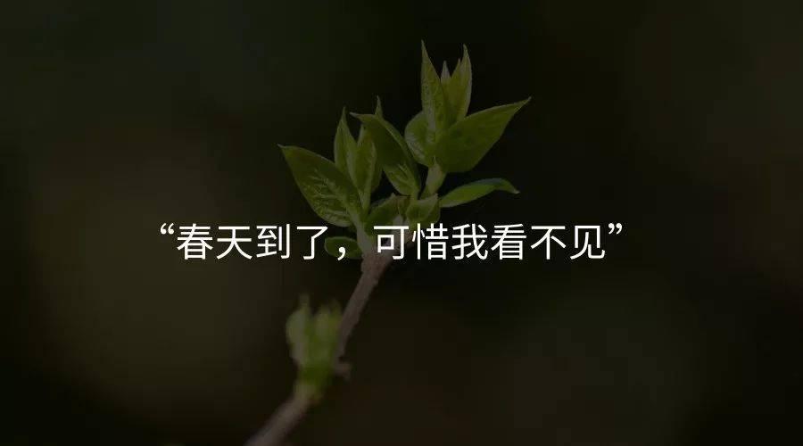 鸟哥笔记,职场成长,付永承,思维,运营规划 ,成长